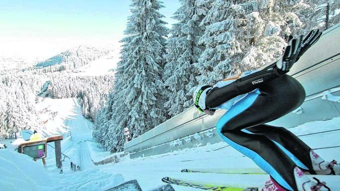 Skispringer cropped
